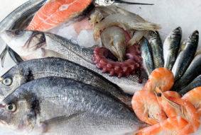 охладена риба онлайн супермаркет BG MARKET
